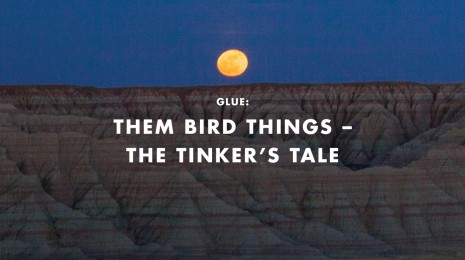 Them Bird Things – The Tinker's Tale