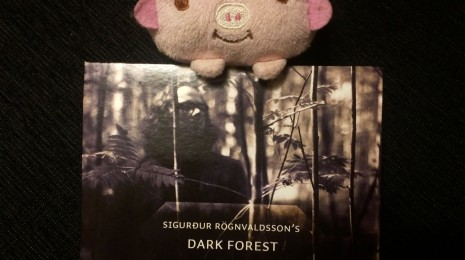 Sigurdur Rögnvaldsson's Dark Forest – Kisima