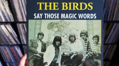 The Birds – Say Those Magic Words LP, eli haluatko pelata R&B-peliä?
