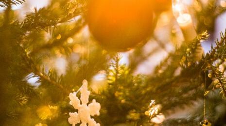 Rosvo-joulu